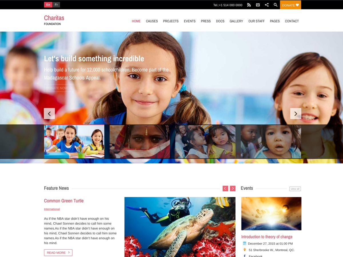 Charitas Child Theme WP template