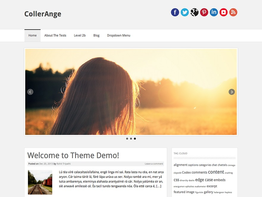 CollerAnge template WordPress free