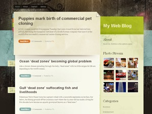 Color Paper WordPress blog template