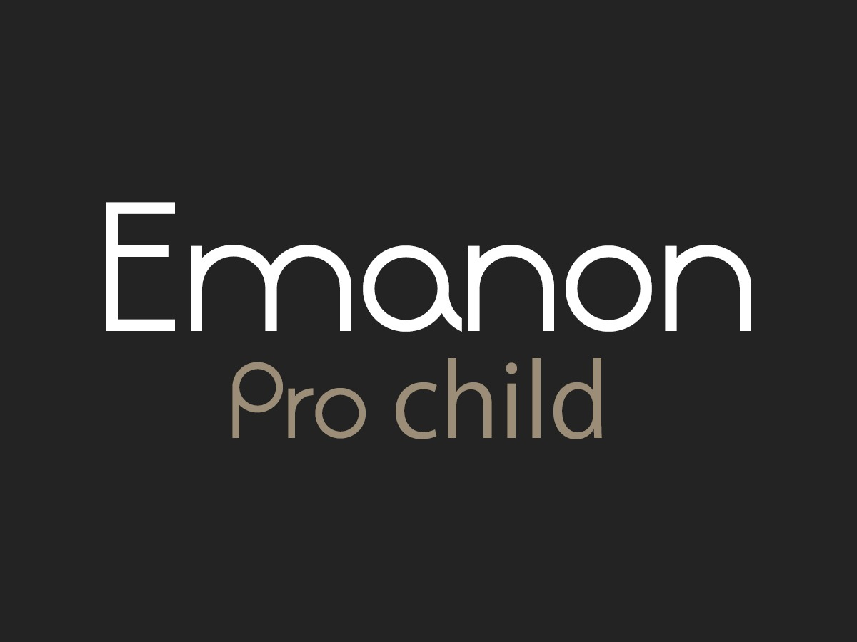 Emanon Pro child WordPress theme design