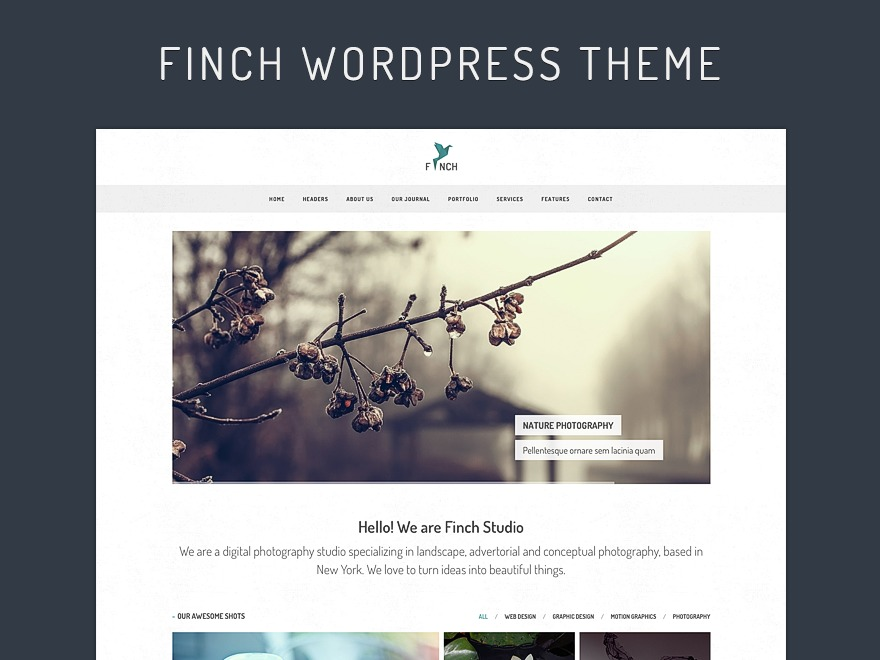 Finch WP WordPress theme