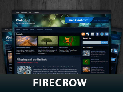 Firecrow best WordPress template