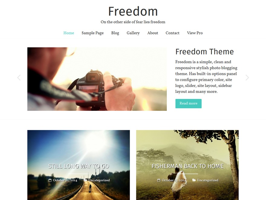 Freedom WordPress template free