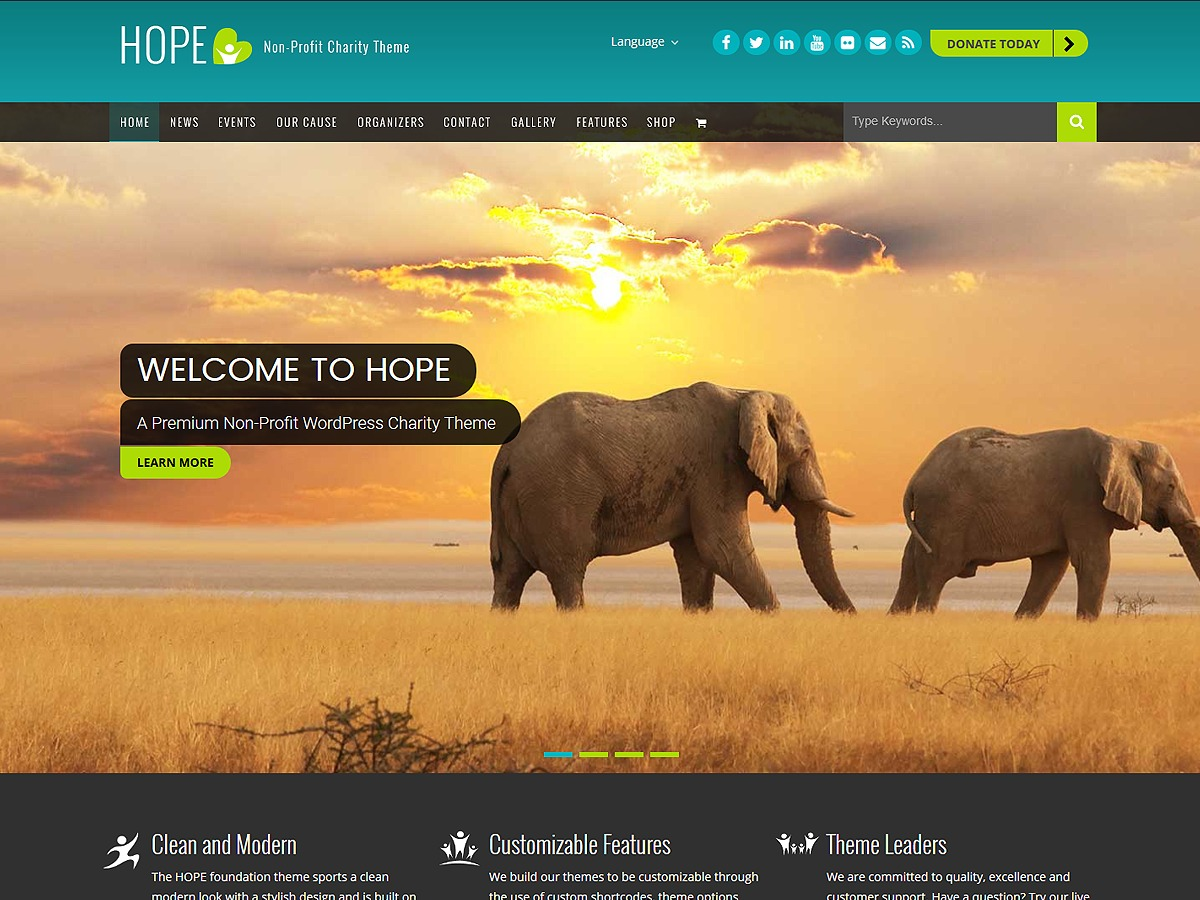 HOPE - Non-Profit Charity Theme WP theme