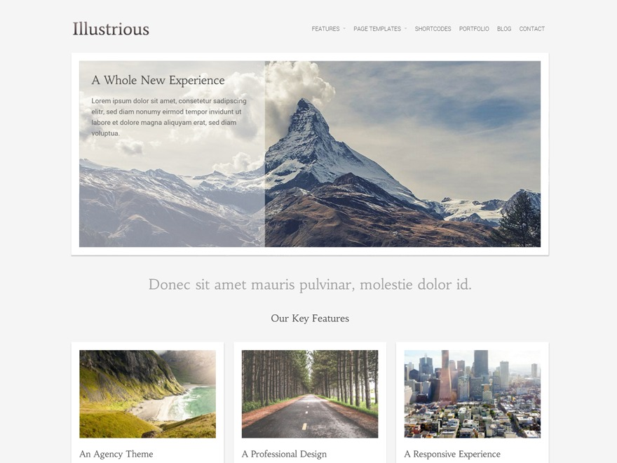 Illustrious WordPress shopping theme