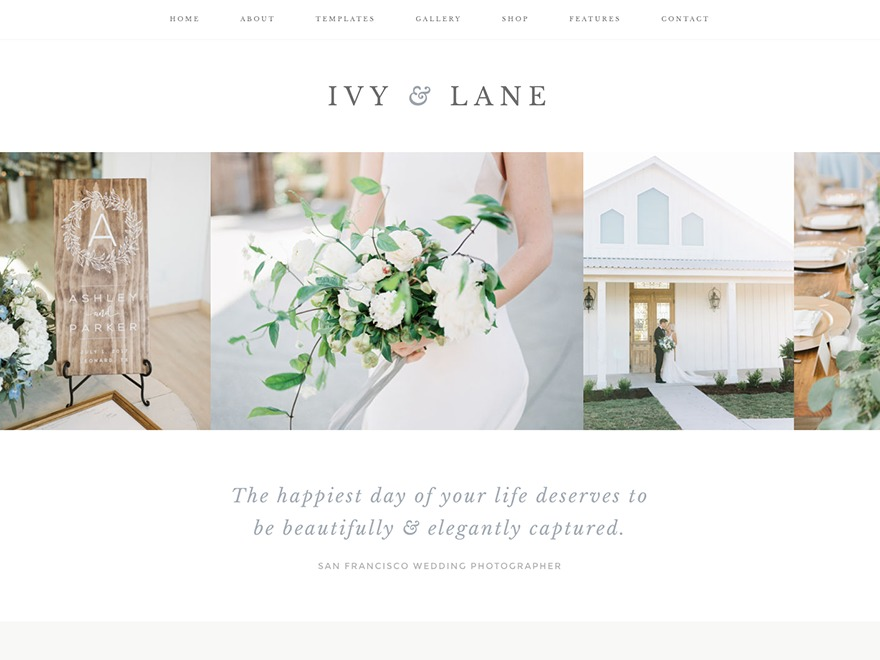 Ivy WordPress theme