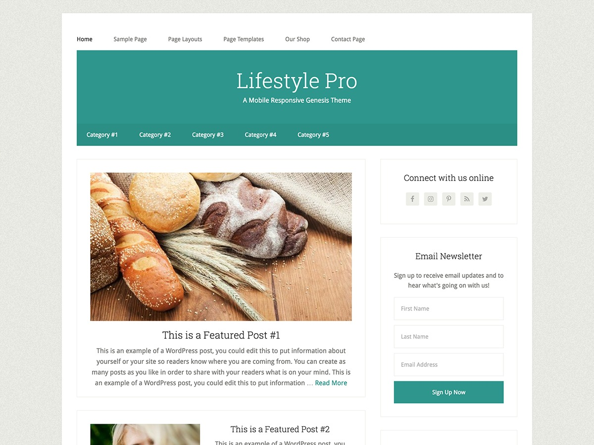 Lifestyle Pro WordPress news template