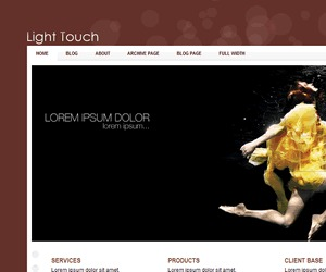 Light Touch fashion WordPress theme