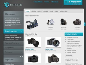 Mercado WordPress theme design