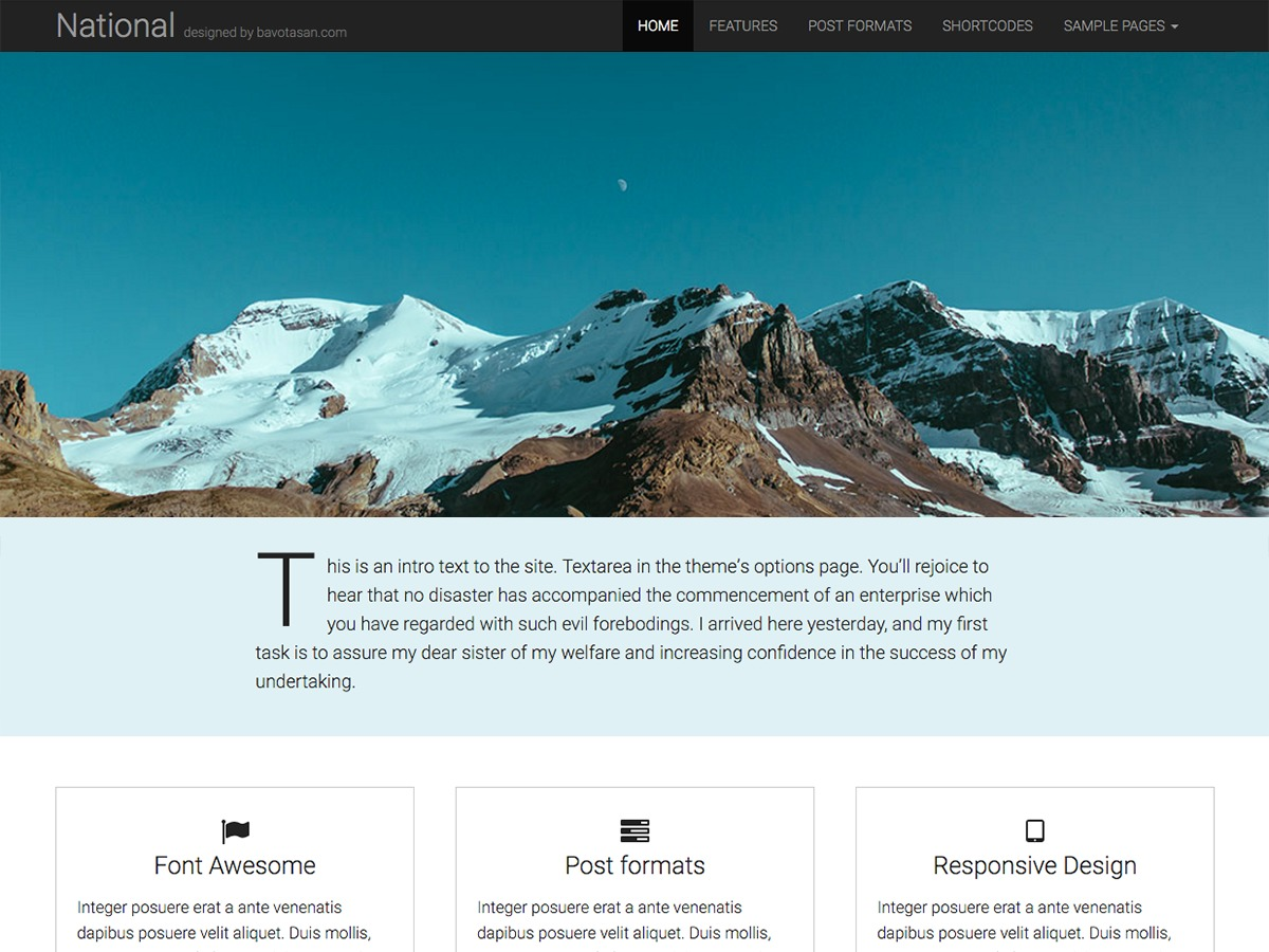 National Basic free website theme