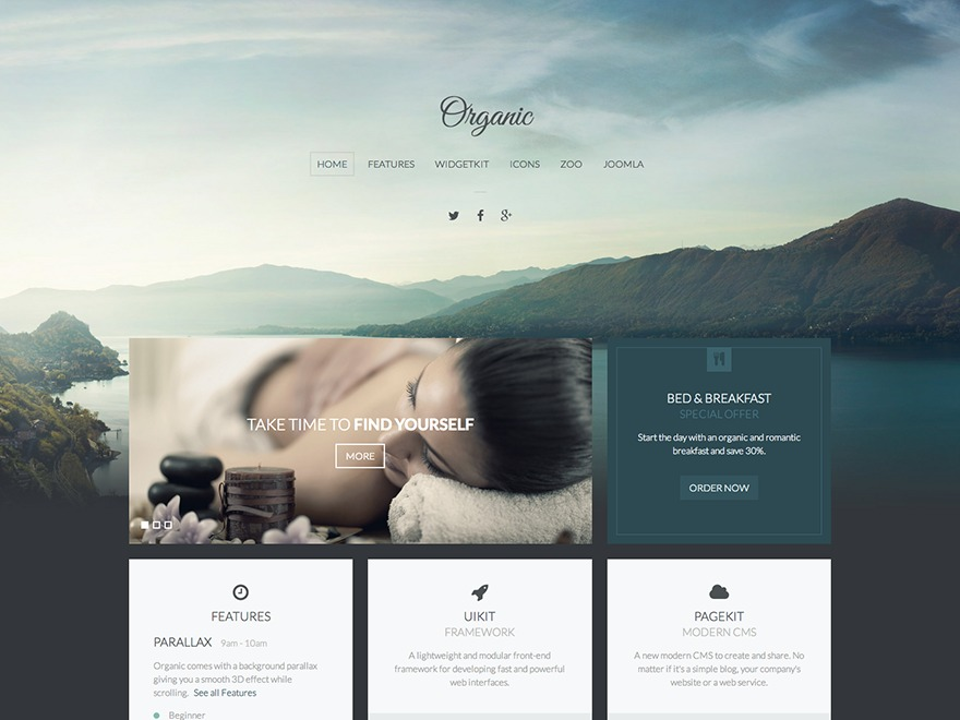 Organic premium WordPress theme