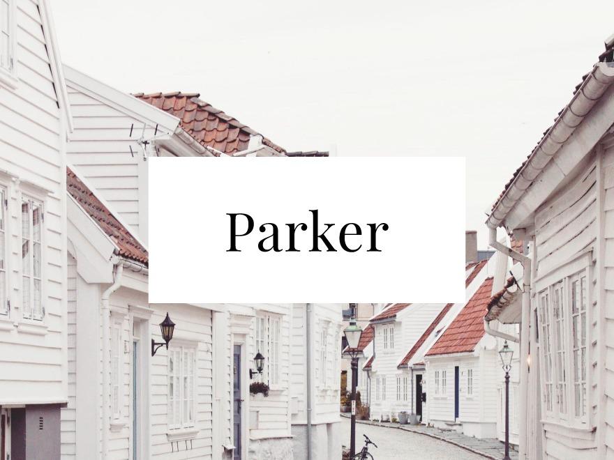 Parker WP theme