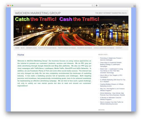 picolight WordPress blog theme - weichenmarketinggroup.com