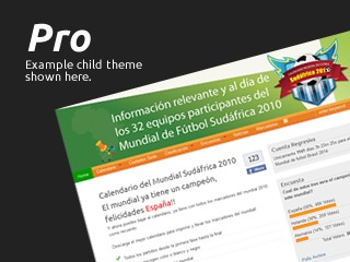 Pro for Ashford premium WordPress theme