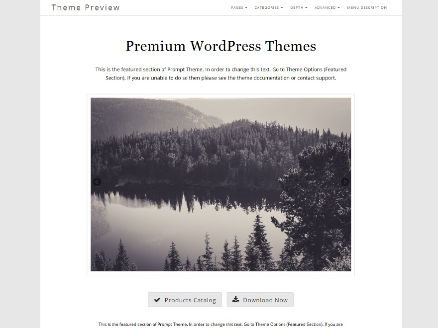 Prompt business WordPress theme