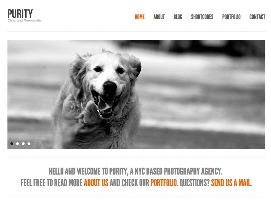Purity Child Theme personal blog WordPress theme
