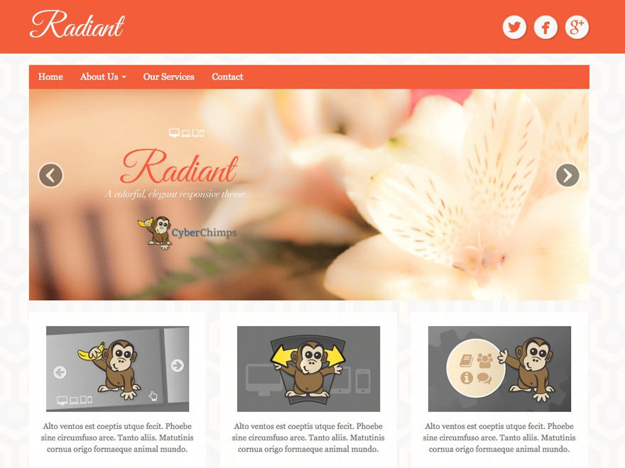 Radiant free website theme