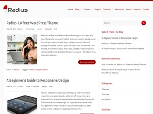 Radius business WordPress theme