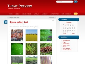 RedBel best WordPress template