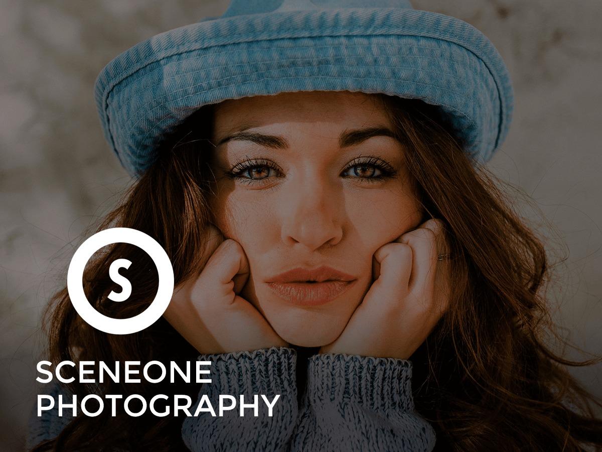 SceneOne WordPress theme image