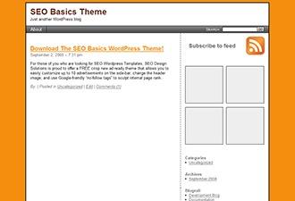SEO Basics WordPress theme