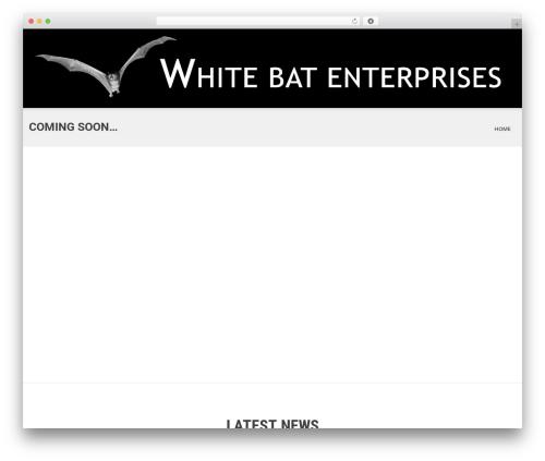 SKT White WordPress theme design - whitebat.com