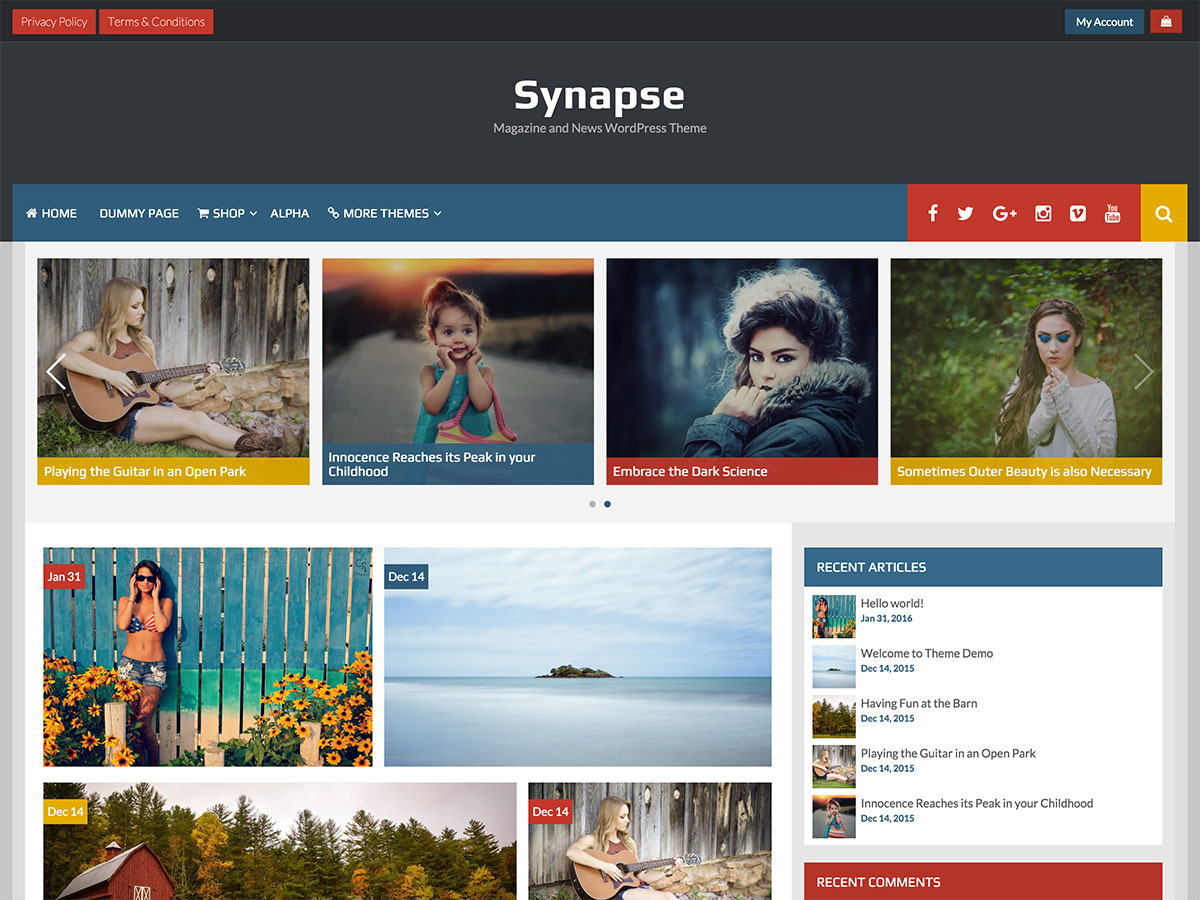 Synapse free WP theme