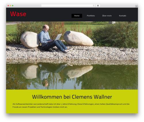 Theme WordPress BizFlare - wa-se.de