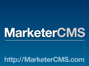 Theme WordPress MarketerCMS