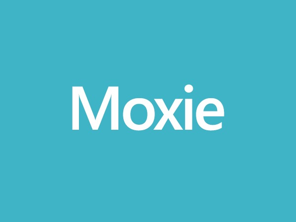 Theme WordPress Moxie