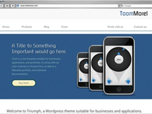 ToomMorel Lite free WP theme