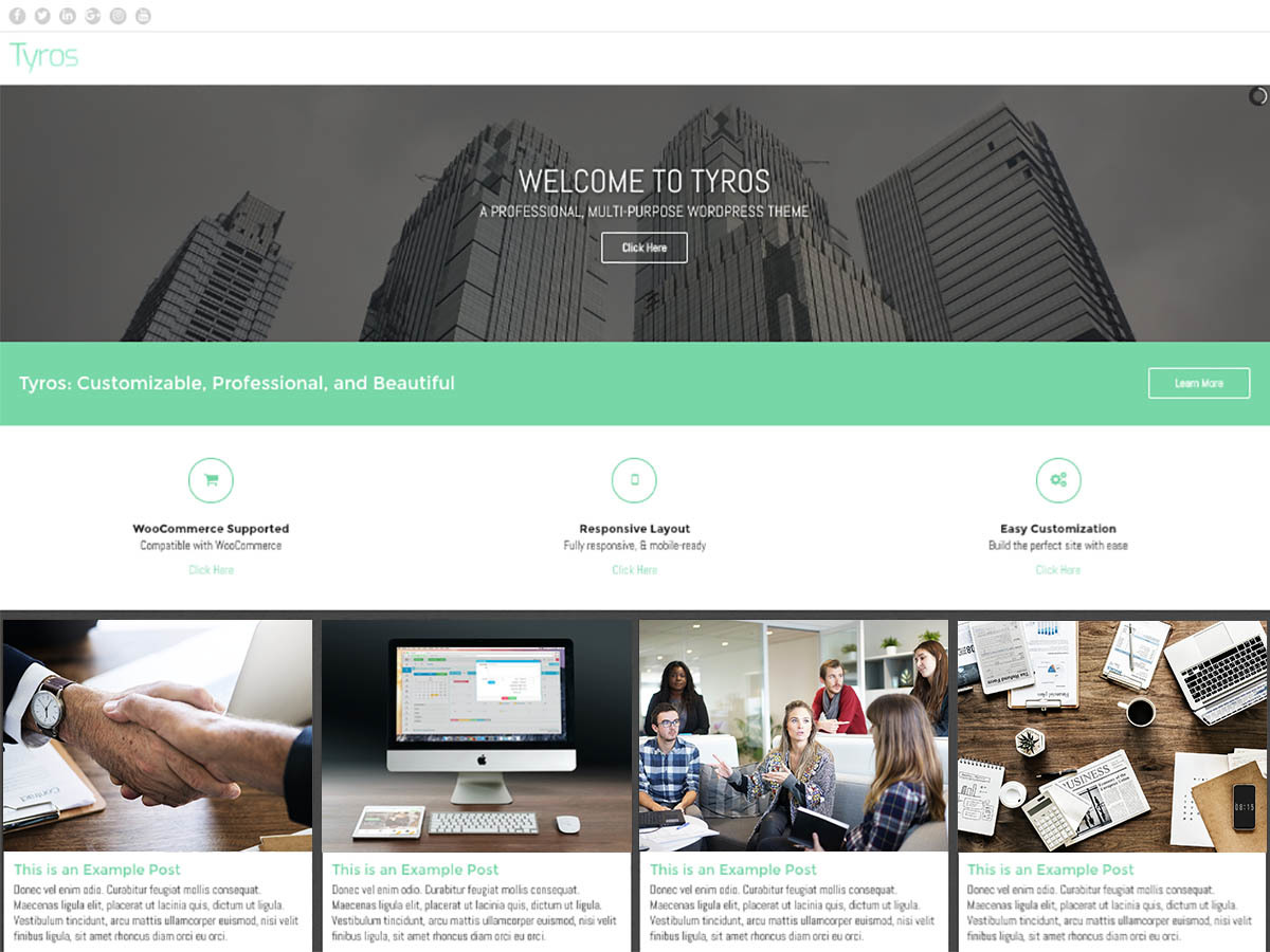 Tyros WordPress store theme