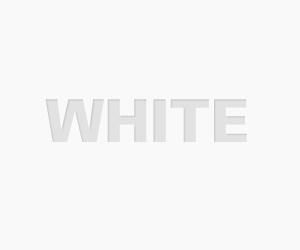 White Theme WordPress template