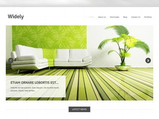 Widely WordPress blog template