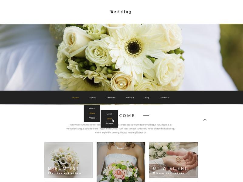 WordPress template theme54584