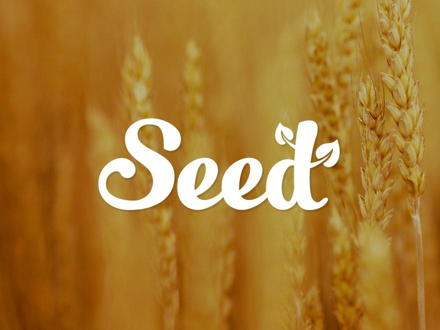 WordPress theme Seed