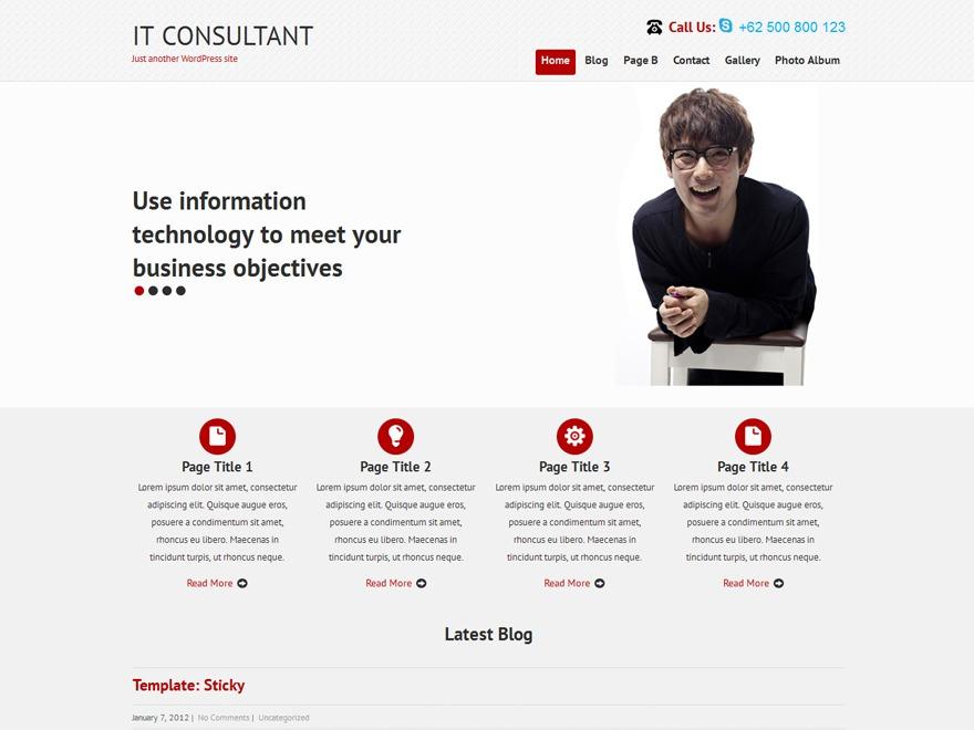 WordPress theme SKT IT Consultant