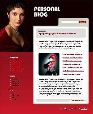 WordPress website template WordPress theme 494