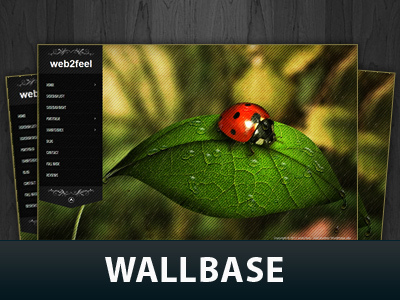 WP template Wallbase