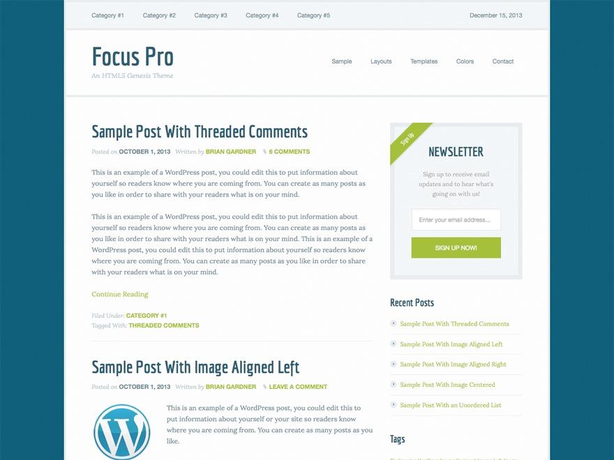 WP theme Focus Pro Theme