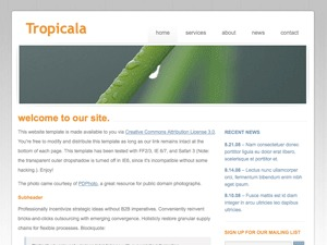 WP theme Tropicala