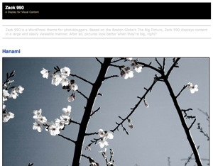 Zack 990 WordPress blog template