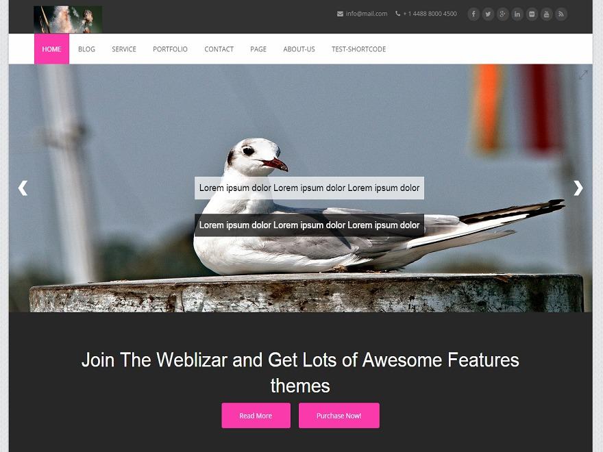 Chronicle-Pro company WordPress theme