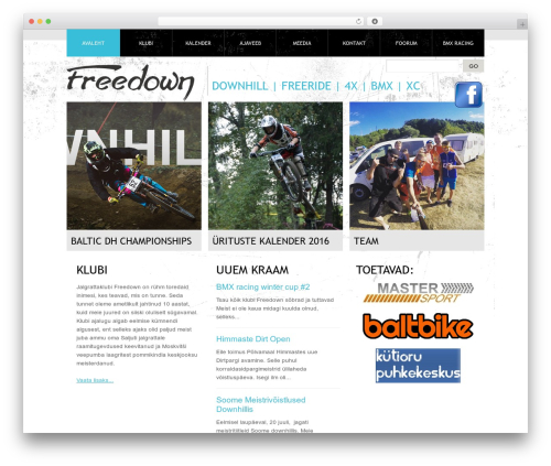 Template WordPress Theme 1274 - freedown.ee