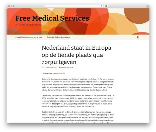 Twenty Thirteen theme free download - fms.nl