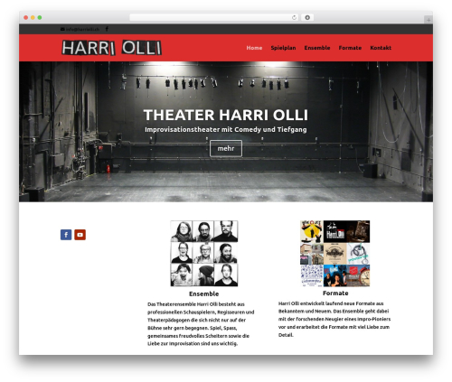 Divi WP template - harriolli.ch