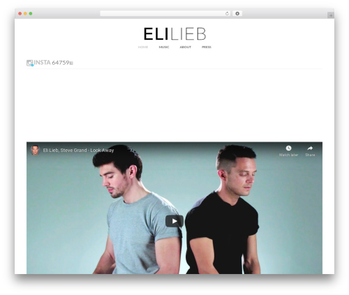 WordPress cff-masonry plugin - elilieb.com