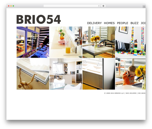 Square Box Responsive Theme business WordPress theme - brio54.com