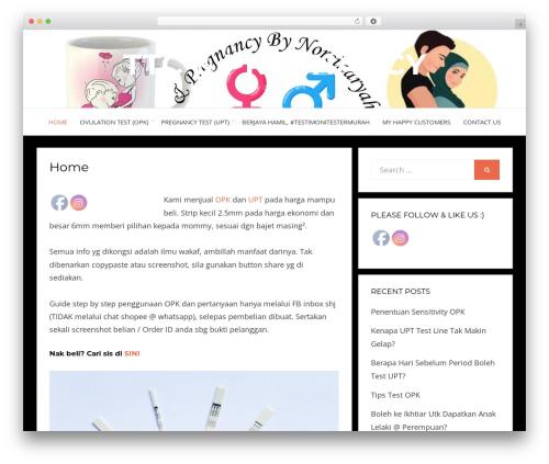 Bezel free WP theme - ebuying.com.my