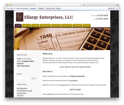 Customized theme WordPress - ellargy.net